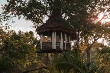 Tree house Lodge 4 jours et 3 nuits