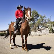 Balade à cheval  à Sabandia