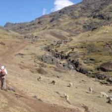 Trekking de Lares